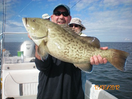 Tom Taylor displays a December shallow water gag grouper.